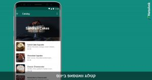 קטלוג וואטסאפ ביזנס - איך להציג מוצרים ושירותים ללקוחות שלכם דרך WhatsApp